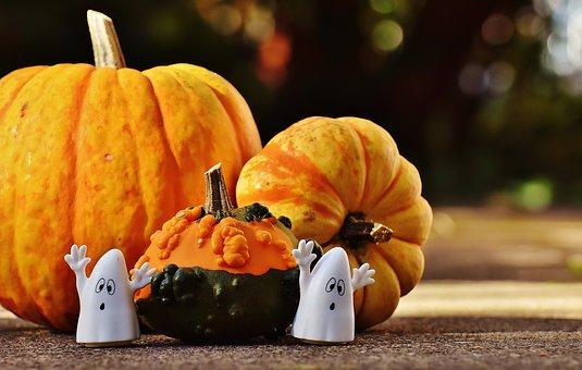 halloween-1743260__340.jpg